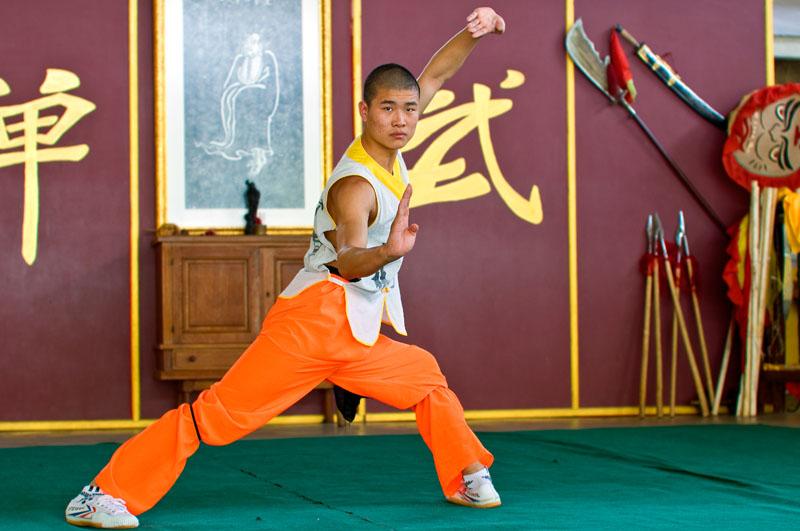 Shaolin kungfu, martial arts, shooting martial arts