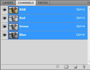 Channels Panel Photoshop