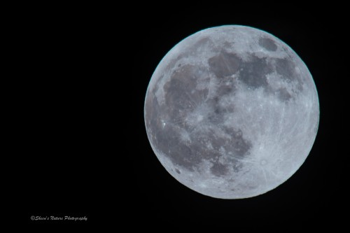 Full Moon over Michigan