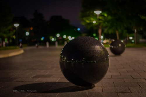 Late Night Ball by ©Sheen's Nature Photography