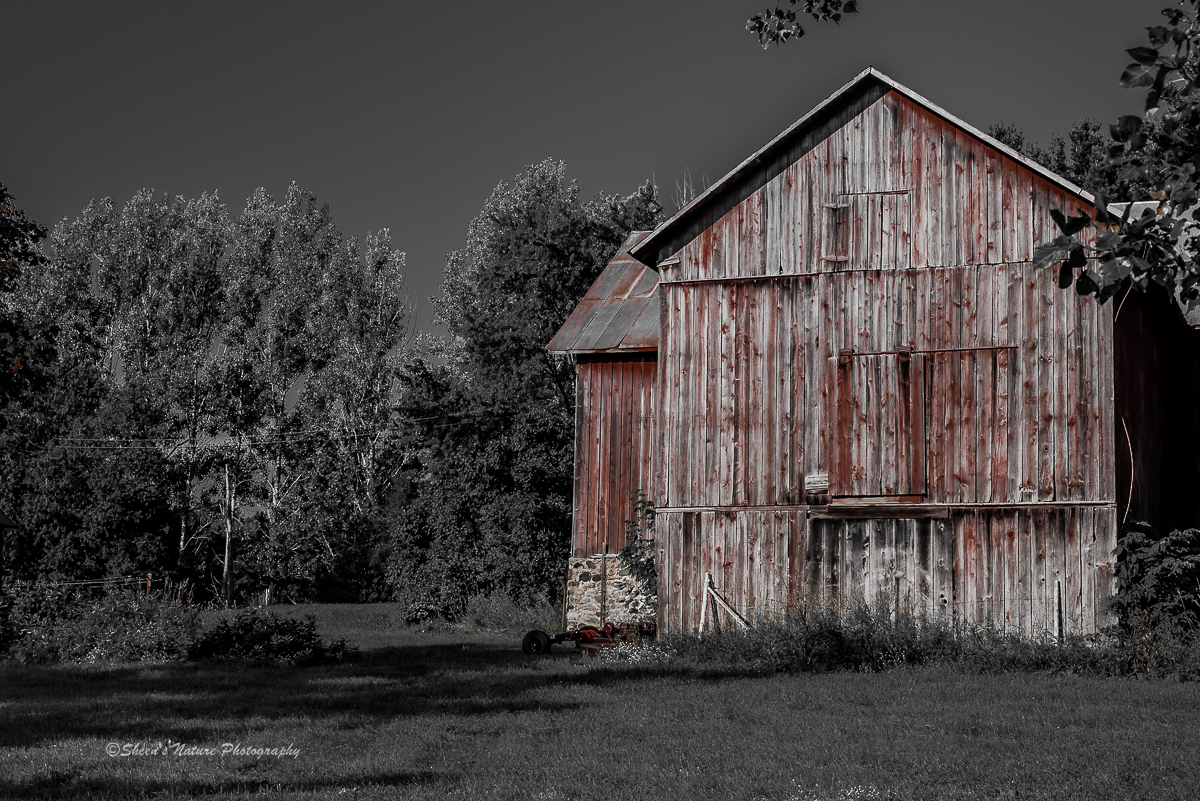 The barn ©Sheen's Nature Photography