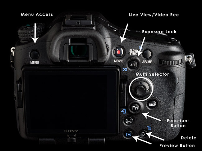 Some of the controls on the rear of your camera.