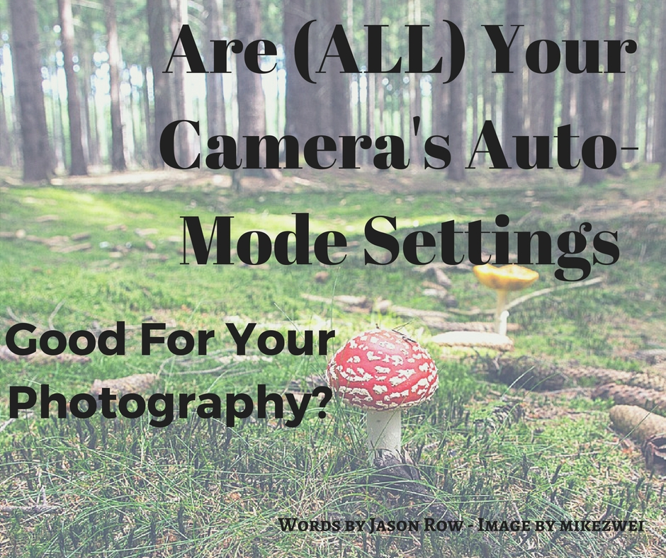 are-all-your-cameras-auto-mode-settings-good-for-your-photography-its-doubtful