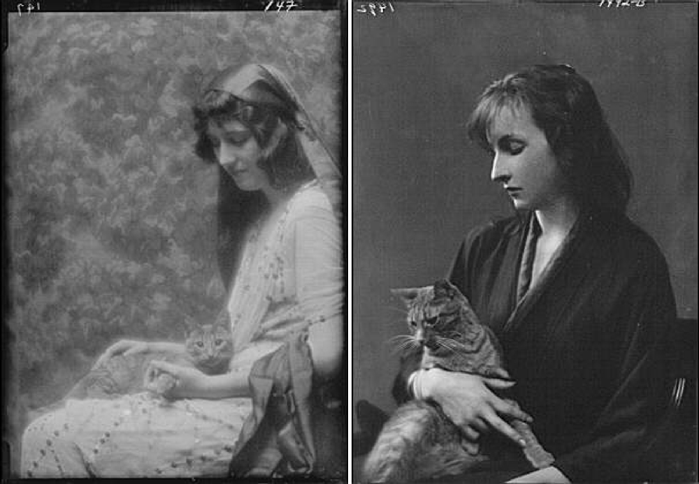 Title from left to right: Maude, Bonnie, Miss, with Buzzer the cat, portrait photograph, Whittaker, Miss, with Buzzer the cat, portrait photograph