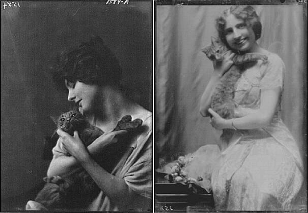 Title from left to right: Bermicchi, Miss, with Buzzer the cat, portrait photograph, Hinckley, Arthur, Mrs., with Buzzer the cat, portrait photograph