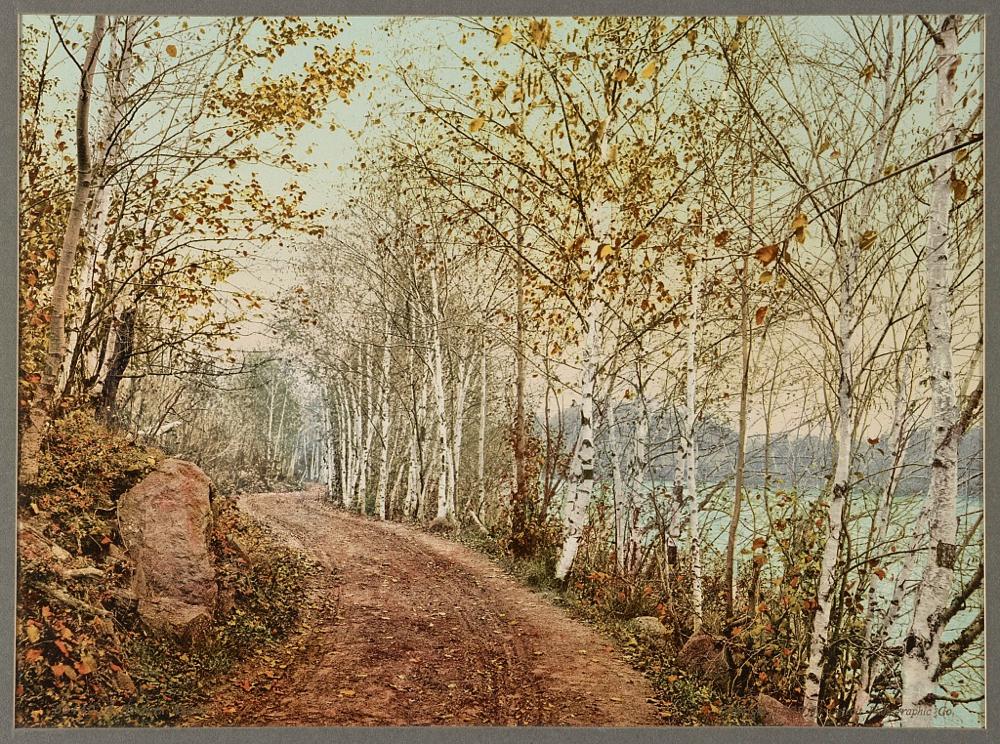 A Northern autumn