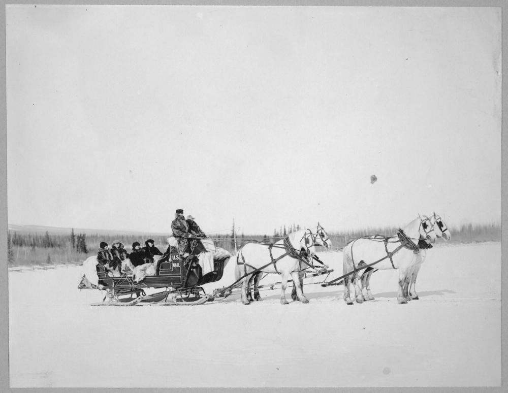 Horses pulling U.S. Mail sled