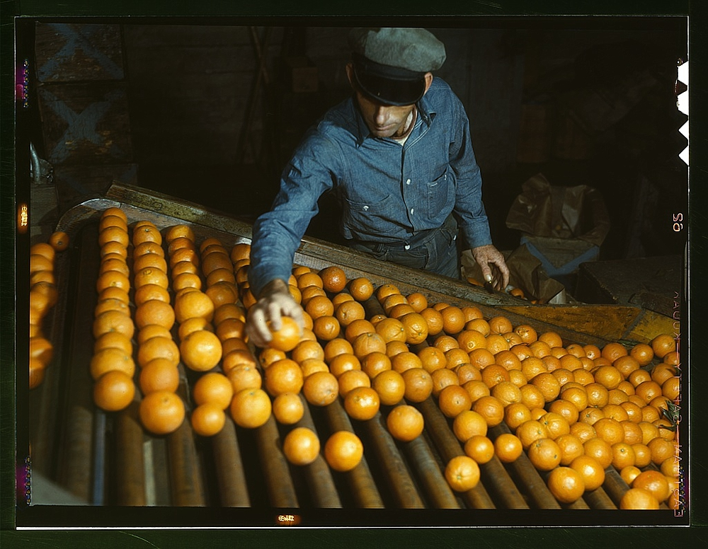 Co-op orange packing plant, Redlands