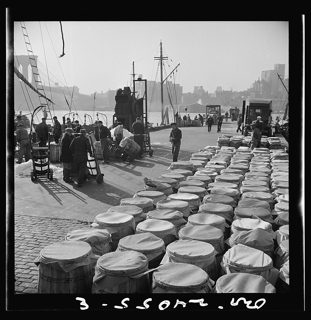 New York, New York. Barrels of fish caught off the New England