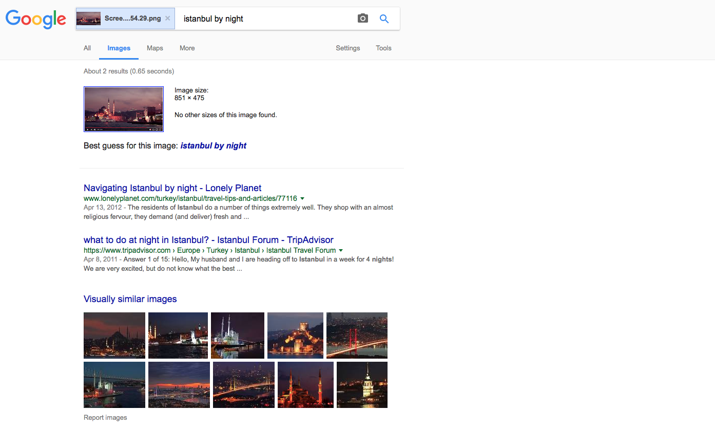 Google correctly identifies a still from a video as Istanbul by night