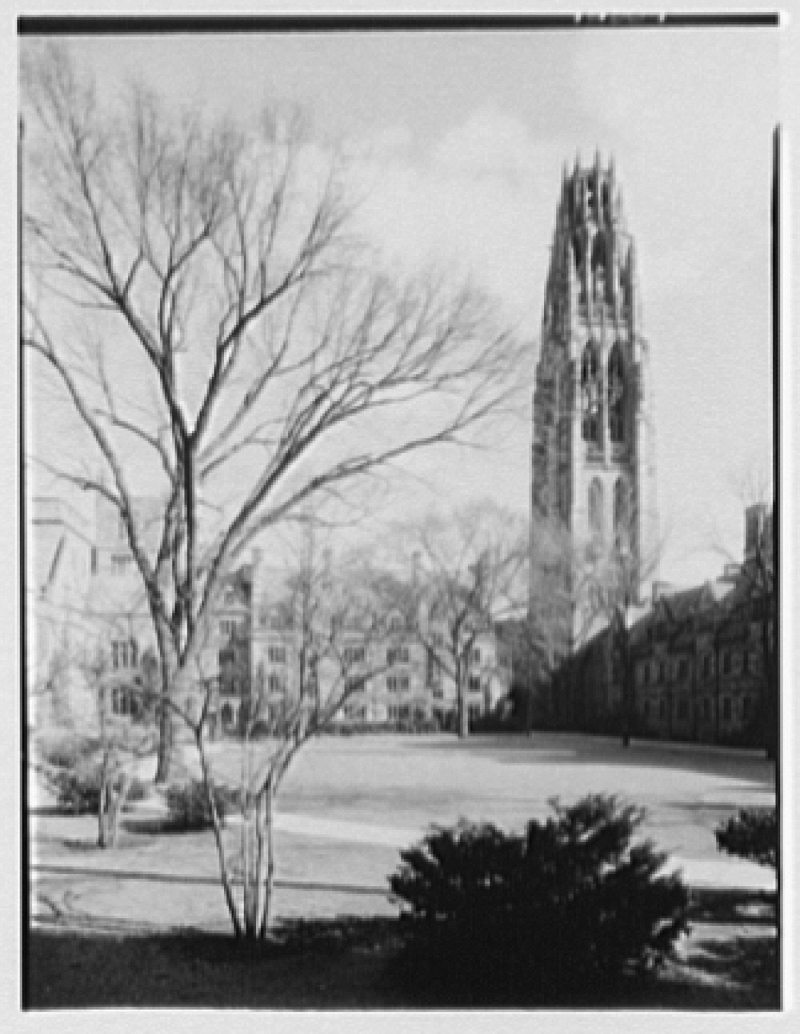 Yale College, New Haven