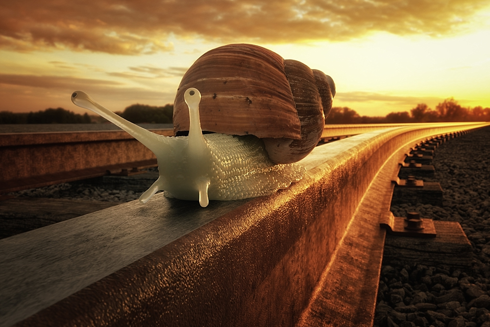 Just a rail snail
