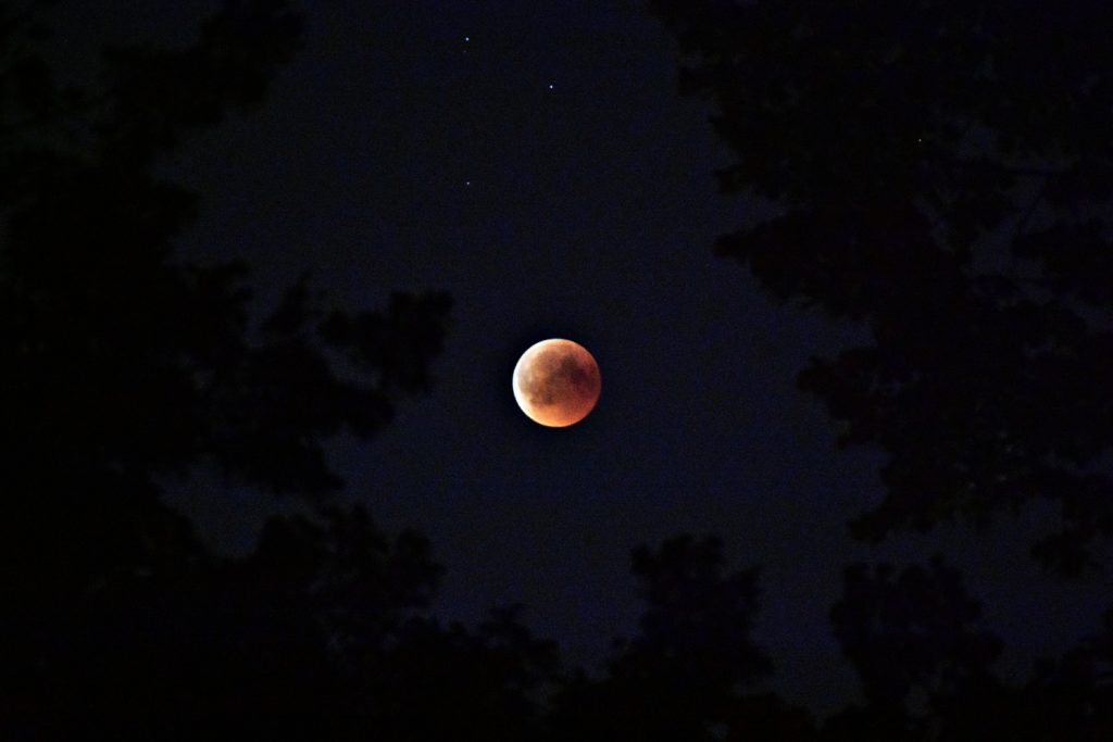 the moon and the stars are amazing subjects for astrophotography for beginners
