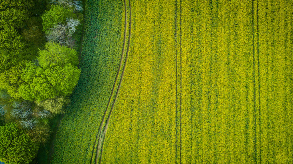aerial photography field