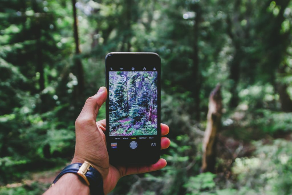 Photo of camera phone photography of forest
