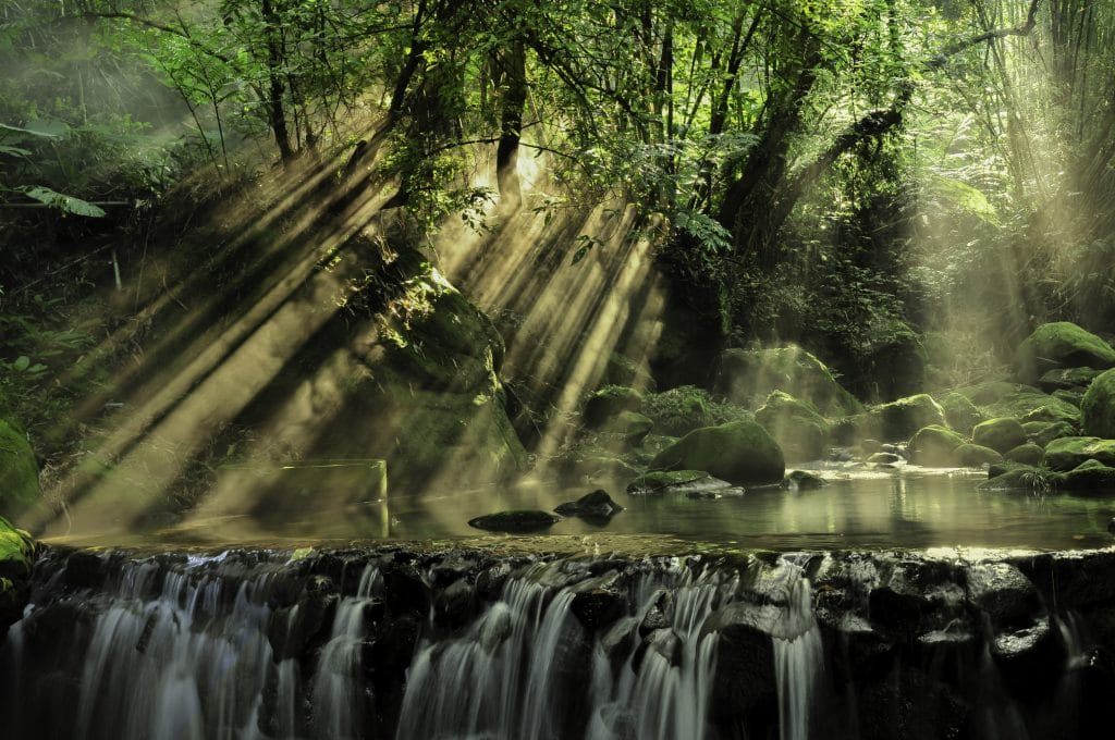 Waterfall and sunlight shining through the forrest